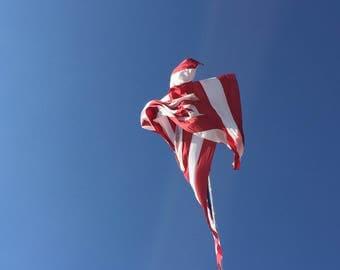 American Eagle USA United States America Flag