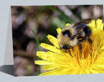 Bumble Bee Art, Greeting Cards, Birthday Cards, Notecard,Dandelion Art,Bee Gifts, Dandelion Gifts, Flower Gifts, Blank Cards, Any day cards