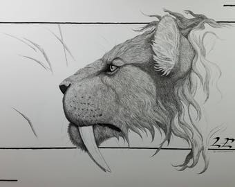 Sabertooth Cat Limited Edition Art Print Pen and Ink Drawing