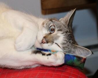 Catnip Kickers - Cat Toy