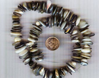 """Natural Gold Lip Shell Extra Large Heishi Beads 16"""" Strand"""
