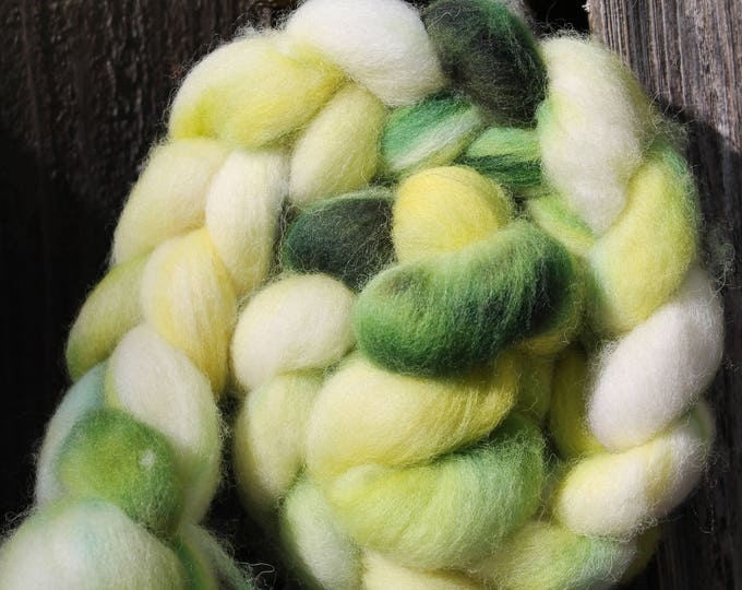 Kettle Dyed Cheviot Wool Top.  Easy to spin. 4oz  Braid. Spin. Felt. Roving. C106