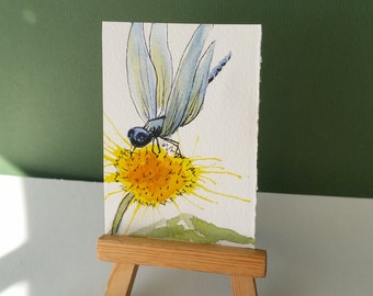 ACEO, Dandelion, Dragonfly, Original Mini Painting, Collectible Gift, Woodsy Art, Nature Art Gift, Mary Hamilton, DreamON, Pond Insect,