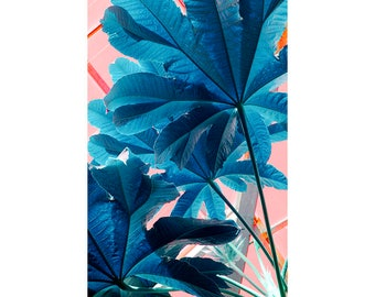Tropical Art Print, Leaf Wall Art, Bold Navy Blue Wall Decor, Abstract Photography