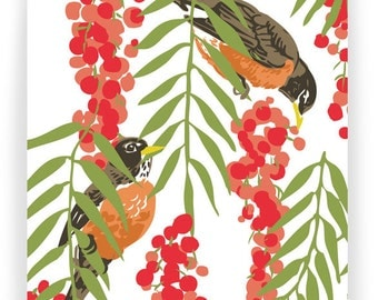 Robins in Pepper Tree: Box of 8 A2 folding blank cards