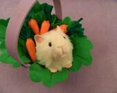 Little Ivory Guinea Pig Plushie
