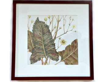 Prairie Dock Flower Original Colored Pencil Drawing, Framed Original Colored Pencil Drawing, Silphium Terebinthinaceum Framed Art