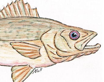 8x10 Walleye Pike Art Print, Printable Fish Art, Freshwater Gamefish Poster, Printable Wall Art, Home Decor, Instant Digital Download