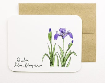 Quebec | Blue flag iris | Flowers of the Provinces and Territories card with envelope | Canadian flowers | Greeting card