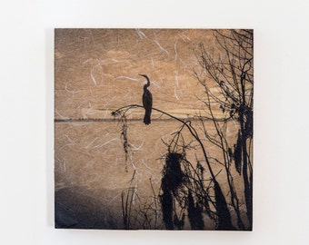 Out on a Limb, Encaustic Photography