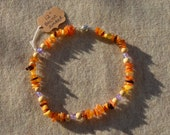 Authentic raw baltic AMBER pet dog cat collar necklace hand crafted