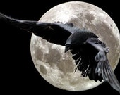 A Year of Full Moons 2017