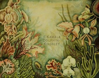 "Paphiopedilum Reef Giclée print by Kamala Dolphin-Kingsley  -   8""x10"""