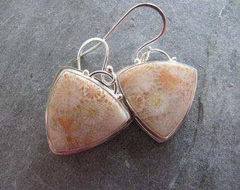 Fossil Coral Earrings in Sterling Silver
