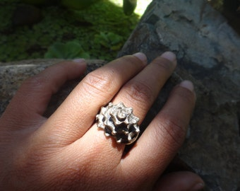 Conch Shell Ring Statement Ring