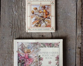 set of two books featuring flower fairies