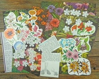 Vintage scrapbooking pack, flowers and gardens, 50 pc scrap pack, cutouts and die-cuts, colourful images, paper craft kit.