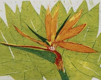 Bird of Paradise - Original Woodcut Reduction Print