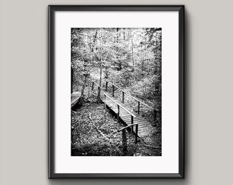 Into the Woods Print, Forest Nature Wall Art, Printable Art by firstfrostdesigns - INSTANT DOWNLOAD