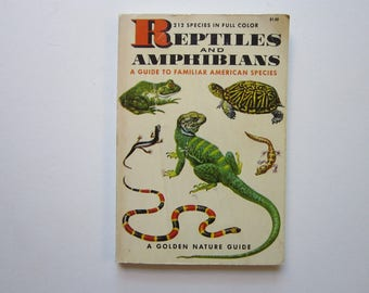 antique pocket sized REPTILE and AMPHIBIAN book - a Golden Guide - full color - circa 1956 - nature, hike, camp - as is