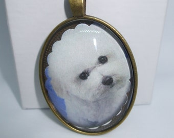 Dog Necklace Glass Dome 3-D Portrait Domed Glass - Super  UNIQUE-Several Breeds  Available