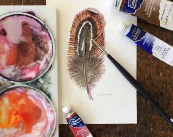 Grouse Feather study - Original Watercolour Feather Painting