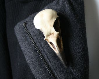 Crow skull pin - Replica resin bird skull brooch - goth victorian taxidermy jewellery by Battie Clothing on Etsy