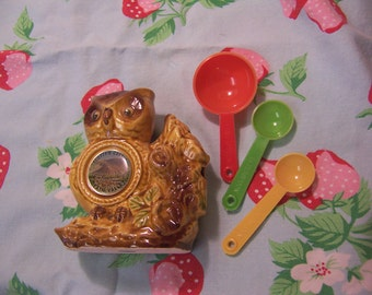 adorable owl with measuring spoons