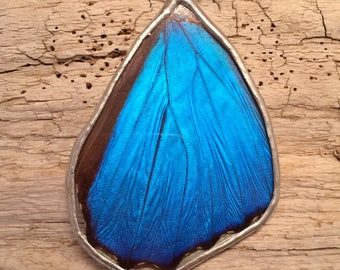 Real Butterfly pendant, butterfly jewelry, handmade butterfly pendant, Blue Morpho Pendant, butterfly, free shipping