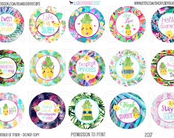 "1"" Bottle Cap Image Sheet - Pineapple Paradise"
