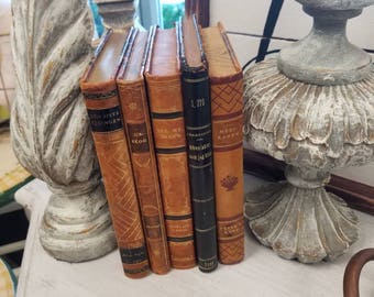 Leather bound set of vintage books