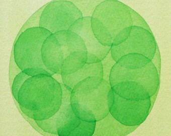 Green Morula  - original watercolor - cell biology