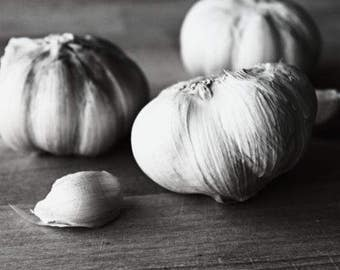 Garlic Photograph - Digital Download - Printable Art Gift - Black and White Food Photography - Black and White Garlic Art