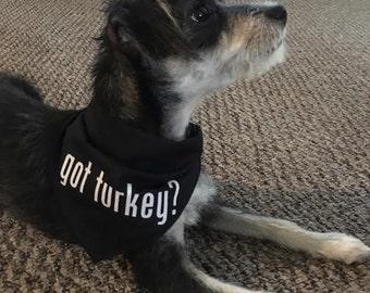 Got Turkey? Thanksgiving Dog Bandana