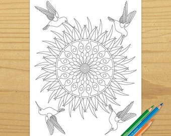 Hummingbird Coloring Book Page, Downloadable Coloring Page