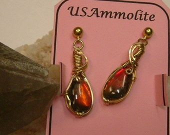 Bright Red Fire Ammolite from Utah Deposit Wire Wrapped Earrings in Gold Filled Wire 494