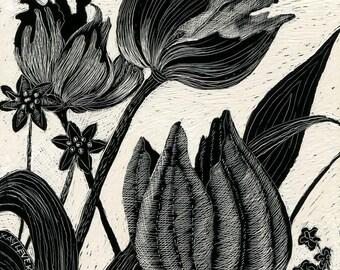 Art Print - Tulips 1 of Original Scraperboard
