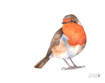Robin print of watercolor painting, R20217, A3 size print, robin watercolor painting print, Robin wall art, robin illustration
