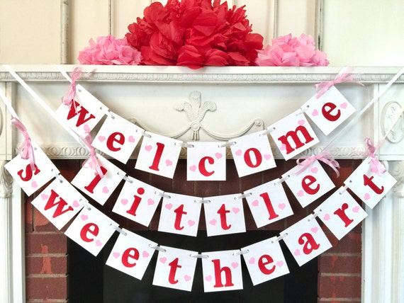 Valentines baby shower decorations welcome little for Welcome home baby shower decorations