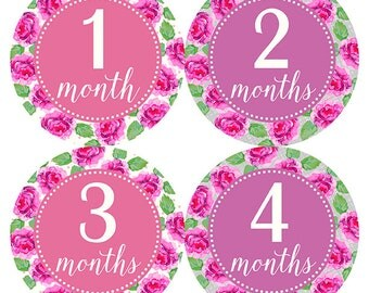 FREE GIFT, Monthly Baby Stickers Girl, Month Stickers Girl, Baby Month Stickers Girl, Flowers, Roses, Baby Shower Gift, Floral Nursery Decor