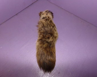 Real animal skin fur parts hide Huge Fox Tail tanned fly fishing
