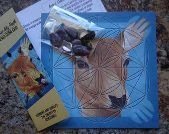 Choose My Path * Little Grid Kit Meditation Affirmation Gemstone Kit