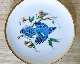 Hutschenreuther Audubon Blue Jay Salad Plate, Bavaria Germany,Lion Mark, Gold Band, Fine China, Display Plate, Bird Lover