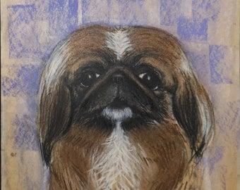 vintage pastel drawing of pekingese dog signed