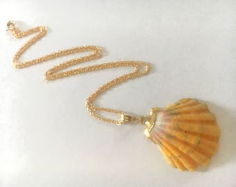 18kt Gold dipped Large Sunrise Shell necklace