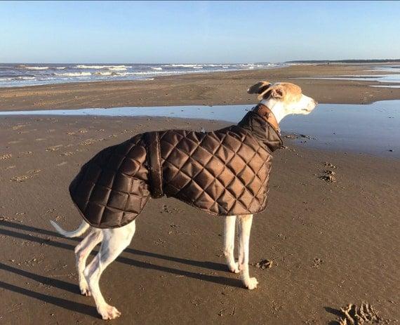 Greyhound waterproof winter coats fleece lined with short neck