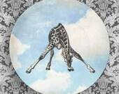 giraffe blue sky melamine plate