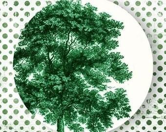 Tree II, Emerald Green melamine plate