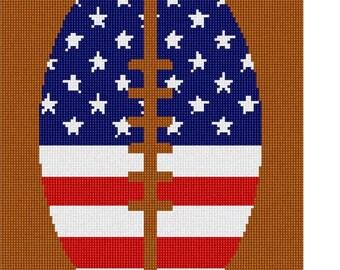 Needlepoint Kit or Canvas: America Is Football