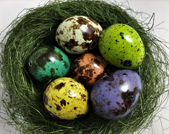 Easter Decoration, Set of 6 Real Quail Eggs, Speckled Quail Eggs
